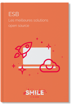 Livre blanc ESB (Enterprise Service Bus) - couverture