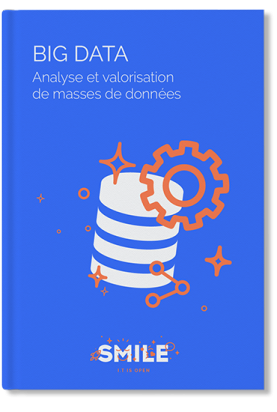Livre blanc Big Data - couverture