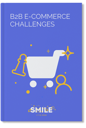 B2B E-commerce challenges cover